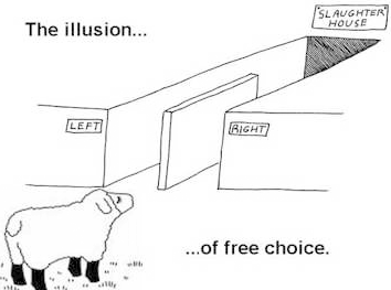 illusion-free-choice.png